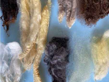 Exploring different wool fibers