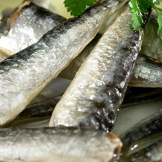 SMALL SARDINES IN  SPICY OLIVE OIL