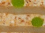 TURRON BULGARO