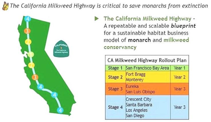 CA_milkweed_highway_edited.jpg