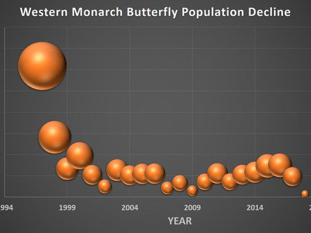 New Monarch Butterfly population graph