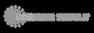 MAVA Logo.png