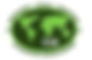 CVA emblem (2).png