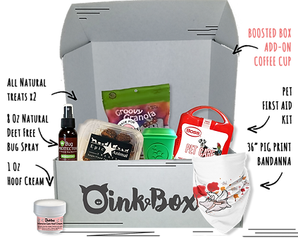 OinkBox September 2018 Pig Adventure Box