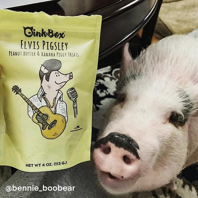 Rock your Piggie's tastebuds with #OinkB