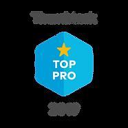 2019-top-pro-badge.7b5f26d8960712d40a671e55436692a9.png