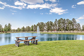 real-estate-photo-pool-lake-community-sc