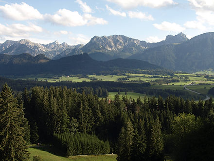 Breitenberg.jpg