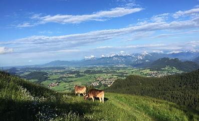 View from Kappelle Alp.jpg