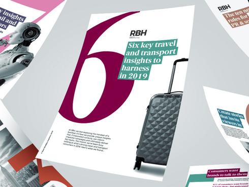 Mindset Insight Reports   RBH