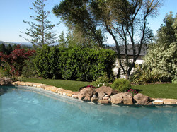 Pool landscaping