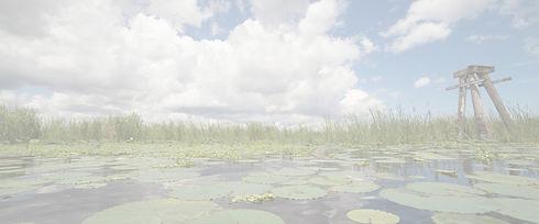 lake_o__edited.jpg