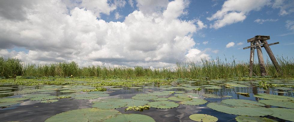 Okeechobee_Lake_Fishing.jpg