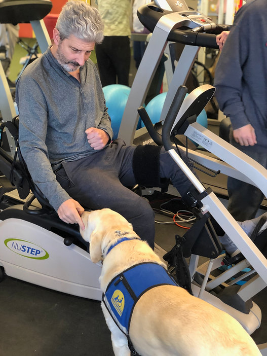 Man on a cross trainer petting a dog.