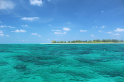 Seyscapes - Bird Island - Seychelles