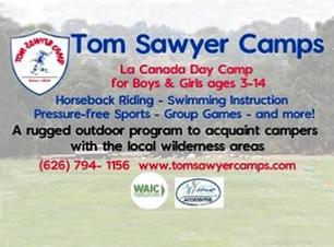 Tom Sawyer - Logo Resized 2.jpg.png