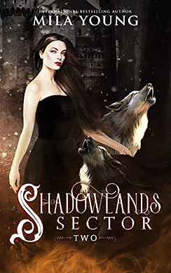 Shadowlands Two.jpg