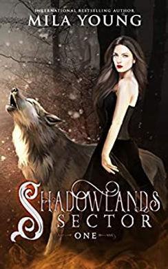 Shadowlands One.jpg