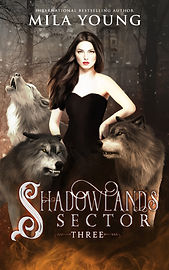Shadowlands Sector 3 - Ebook.jpg
