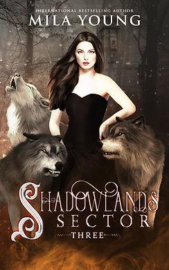 Shadowlands Sector 3 - Ebook.jpg