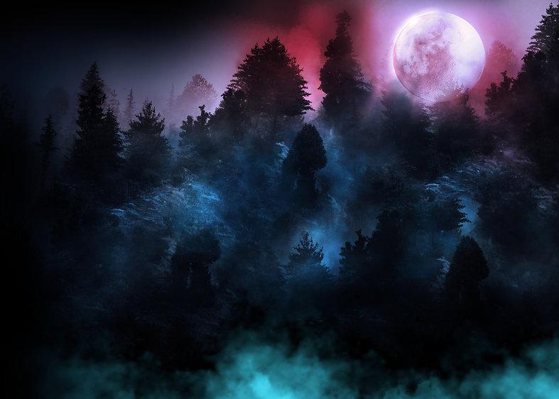 Wild Moon_background.jpg