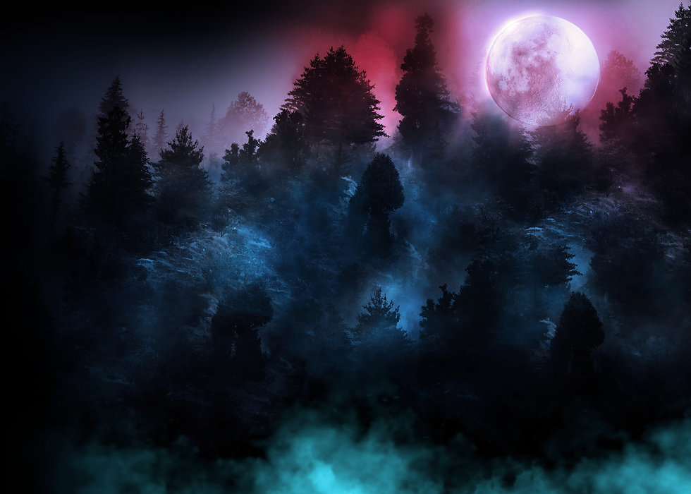 Wild Moon_background.jpg