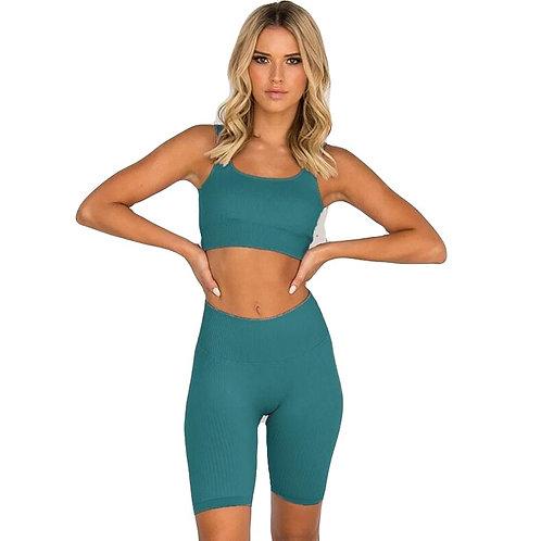 2 Piece  Sports Suits Women Seamless Yoga Set