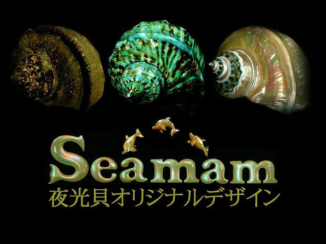 Seamam夜光貝