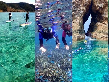 大島海峡のマリンアクティビティ