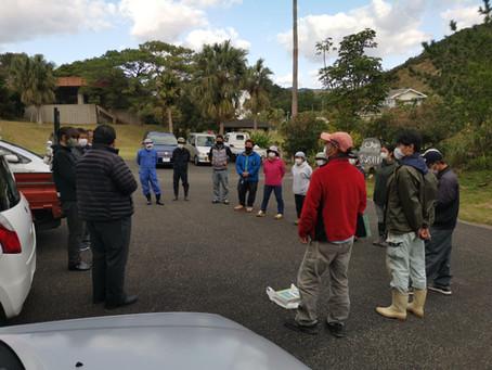 瀬戸内町内「外来生物の分布調査と防除作業」開始