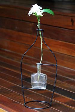 vaso outline 1