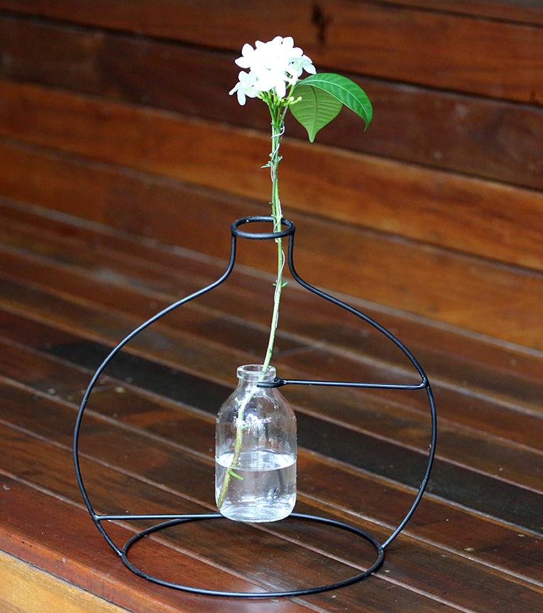 vaso outline 2