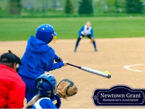 The Jack Repcheck Softball League