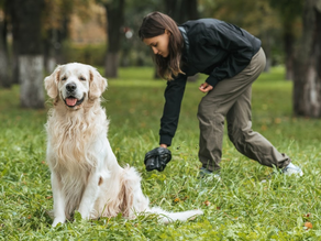Pets and Pet Waste Removal
