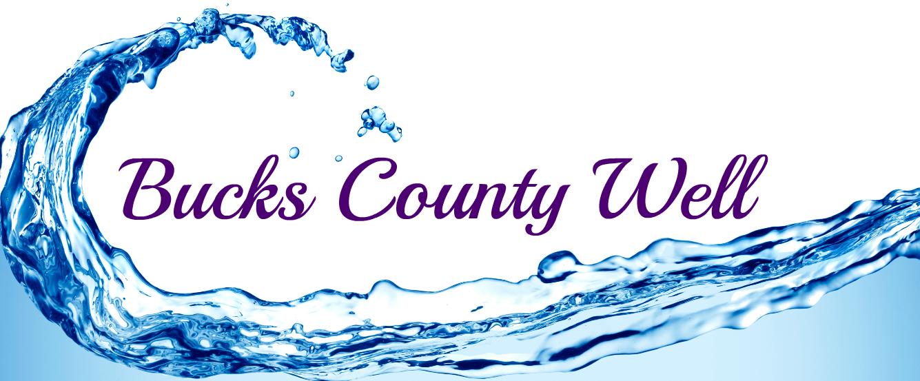 Bucks county Wll logo.png