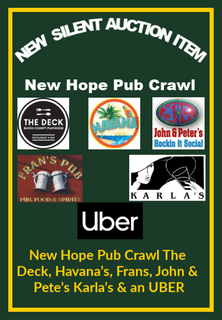 Pub crawl copy.png