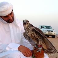 MICEport Dubai