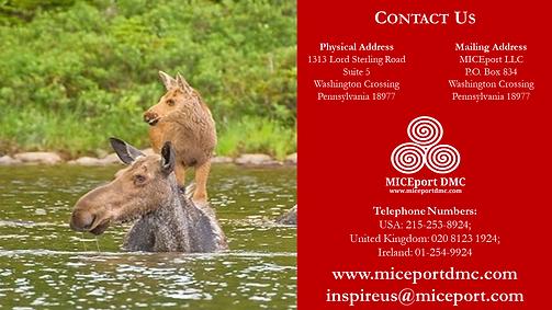 MICEport DMC .png