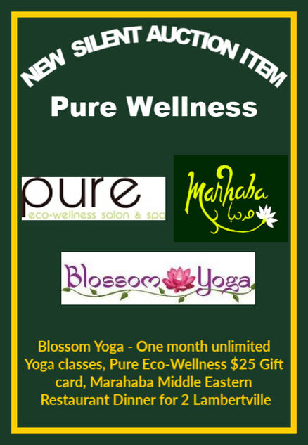 Silent Pure Wellness copy.png