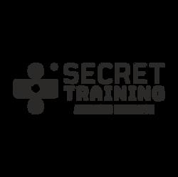Stealth Secret Training
