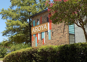 aroya-bushes.jpg