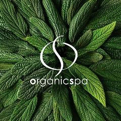 logo_leaves.jpg