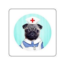 Nurse pug.jpg