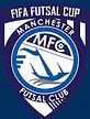 FIfa Futsal Cup 2.jpg