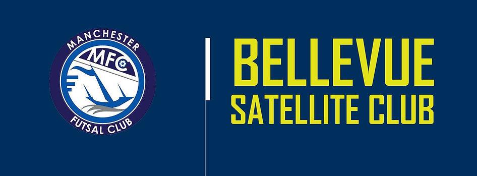 Bellevue Sattelite web.jpg
