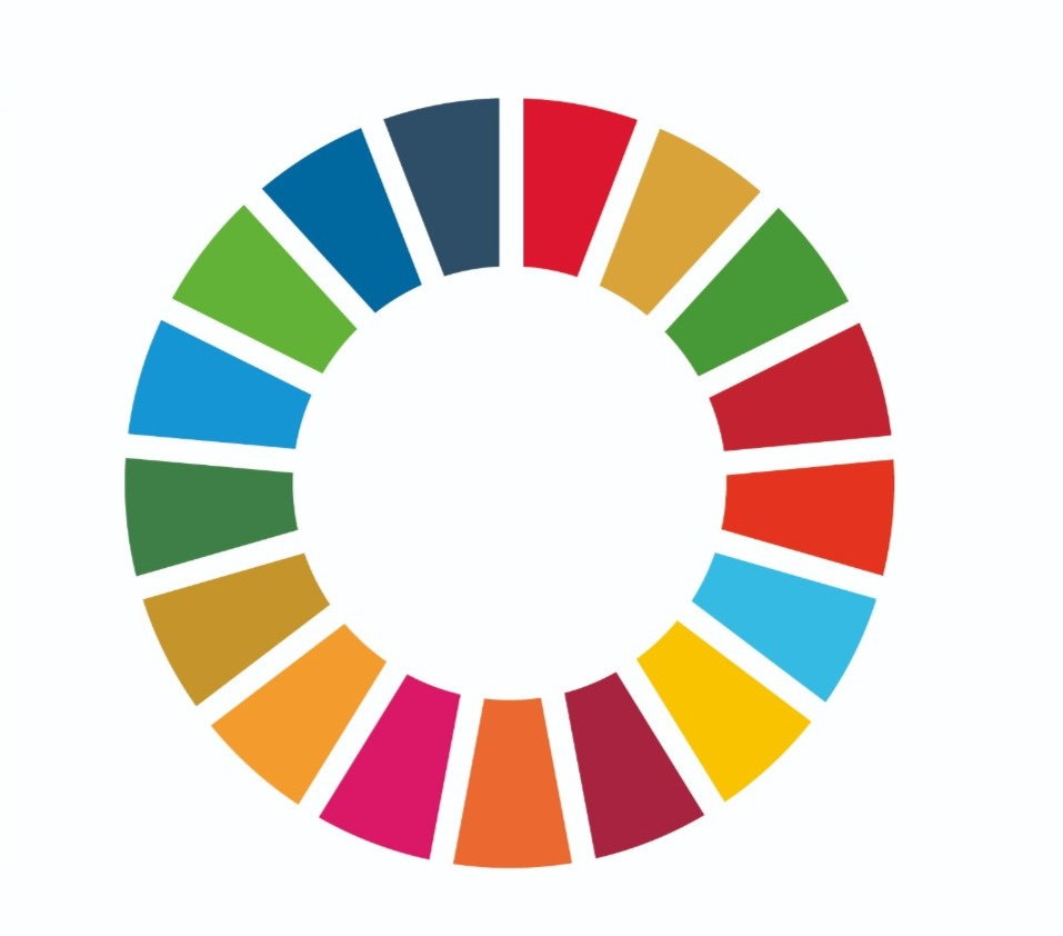 UN Global Goals Masterclass