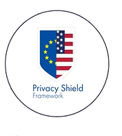 Privacy Shield.png