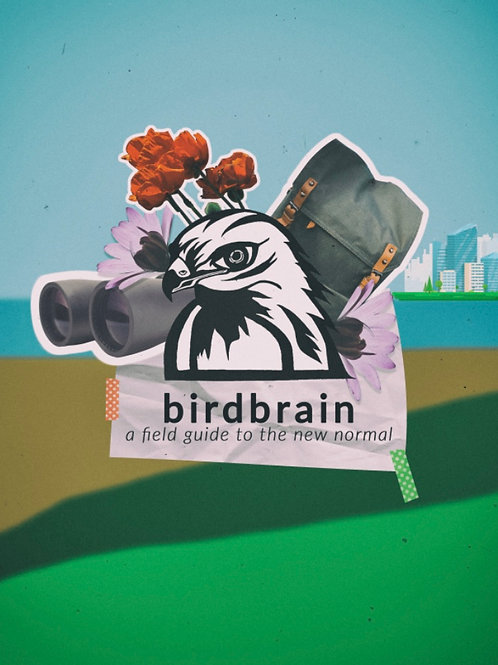 birdbrain: A Field Guide to the New Normal (FREE PDF)