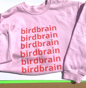 birdbrain basics