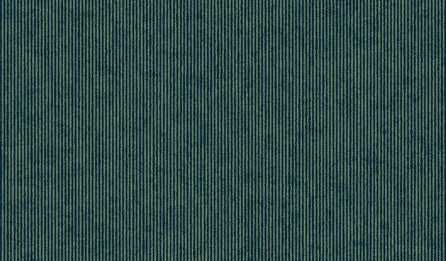 307321.jpg